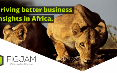 Driving Better Business Insights in Africa