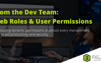 New from the Dev Team: Web Roles & User Permissions